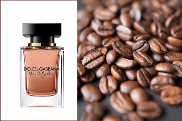 Perfumes de outono